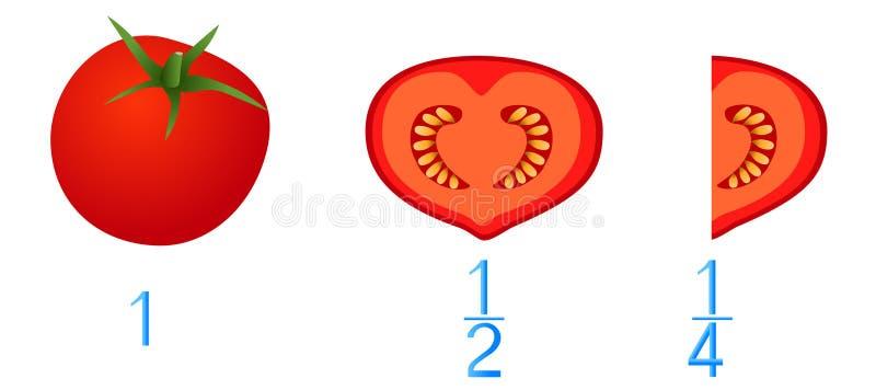 Jeux mathématiques pour des enfants Étudiez les nombres de fractions, exemple avec des tomates illustration de vecteur