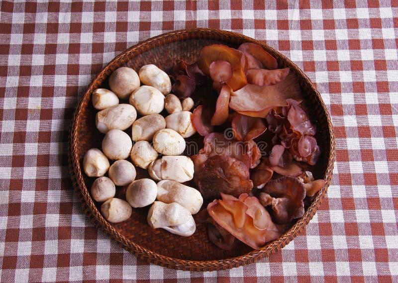 S Ear Mushroom And Straw Mushrooms Stock Photo
