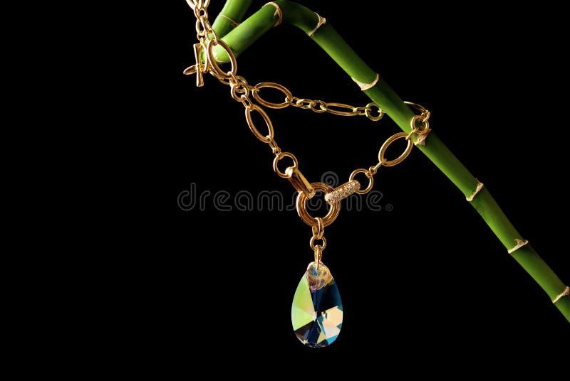 Download Jewellery stock photo. Image of jewelery, treasure, chain - 30352486