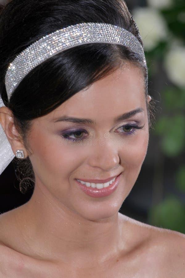 Jewellery, Headpiece, Hair Accessory, Eyebrow royalty free stock photography