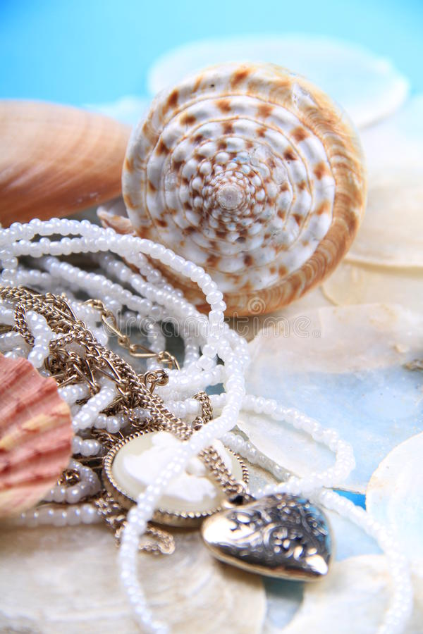 Download Jewellery shells stock photo. Image of blue, dead, nature - 18885544