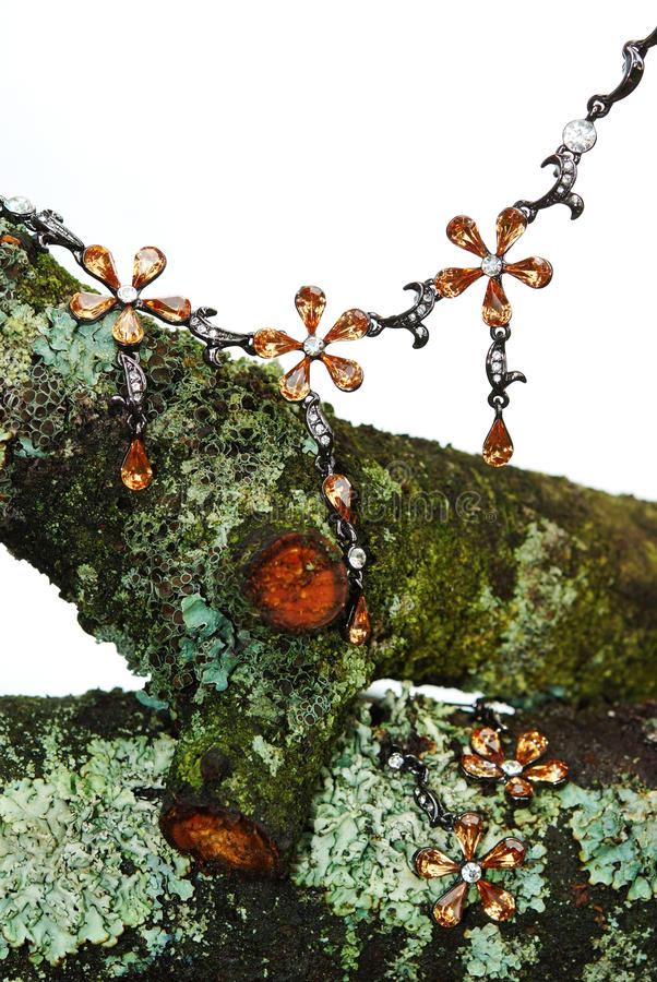 Jewelry On Dry Mossy Brunch Royalty Free Stock Photos