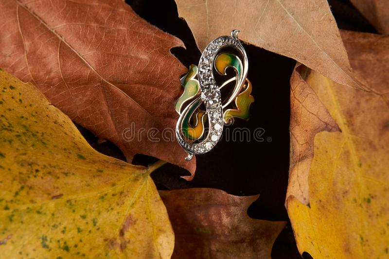Jewelry gold diamond ring on autumn foliage background with copy royalty free stock photography