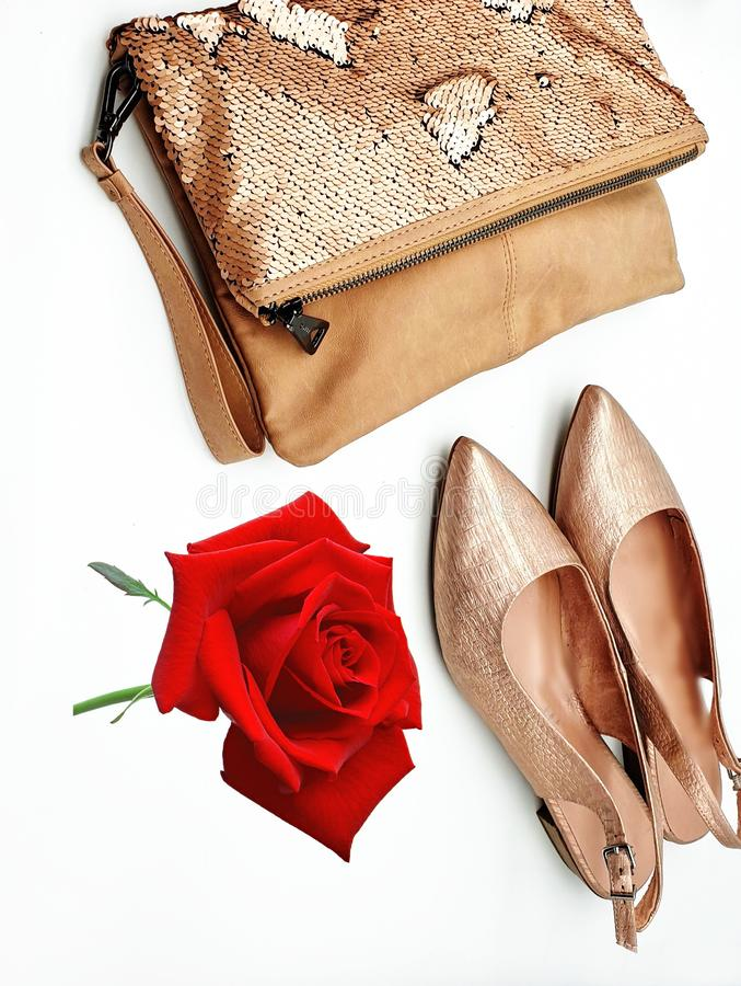 Women shoes and handbag gold stylish elegant luxury accessories roses flowers still life shop girl clothes,Jewelry white pearl fas. Jewelry white pearl fashion stock photos
