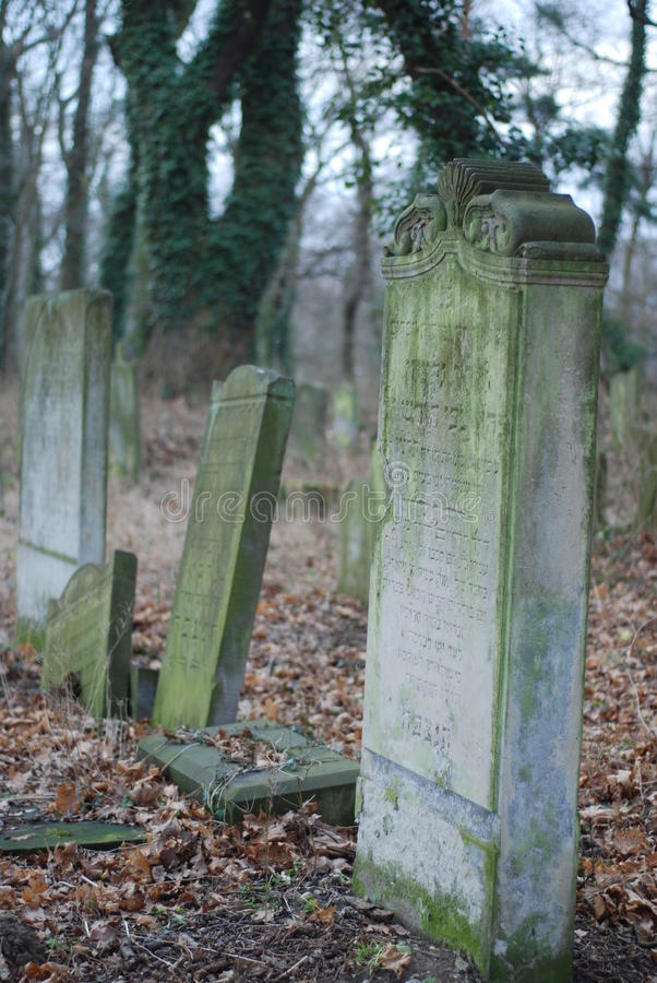 Jewish cemetery. Old jewish cemetery in Poland stock image