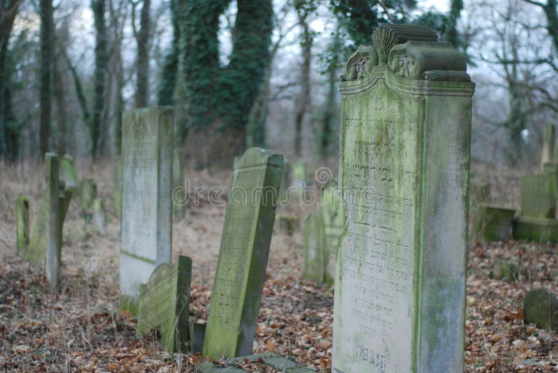 Jewish cemetery. Old jewish cemetery in Poland royalty free stock photography