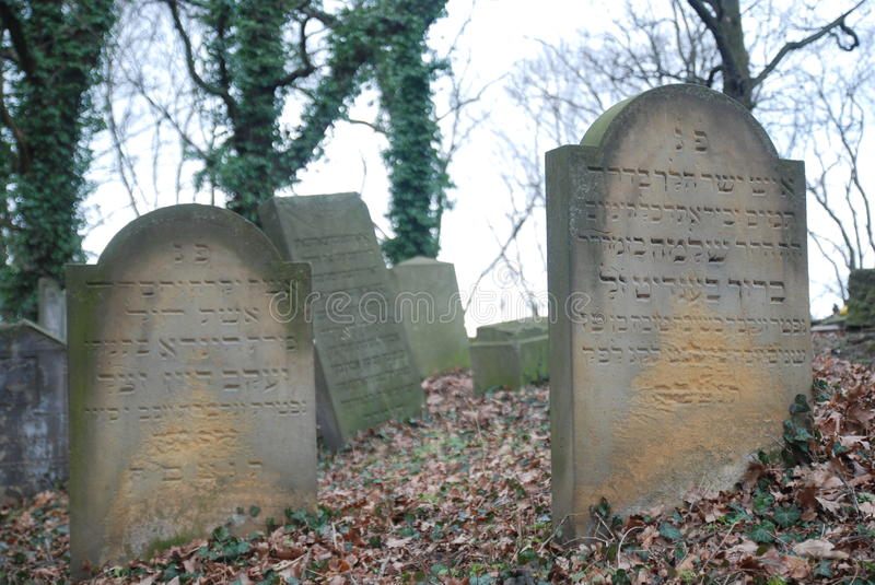 Jewish cemetery. Old jewish cemetery in Poland stock images