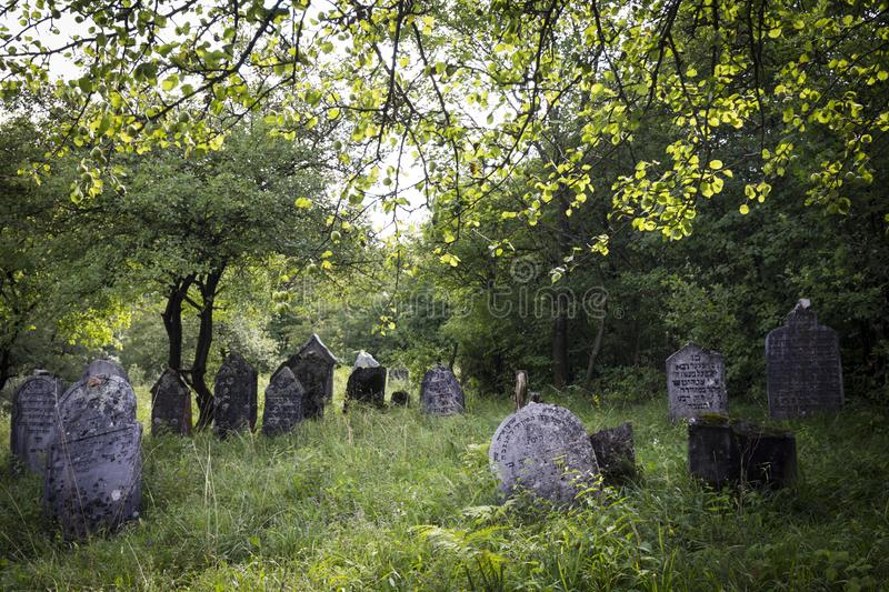 Jewish cemetery in Poland an abandoned place full of beautiful matzevot.  royalty free stock photos