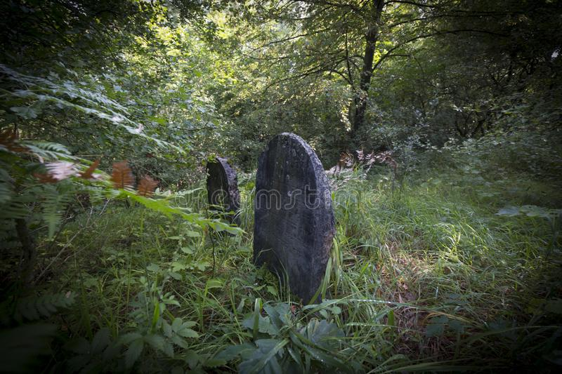 Jewish cemetery in Poland an abandoned place full of beautiful matzevot.  stock photos