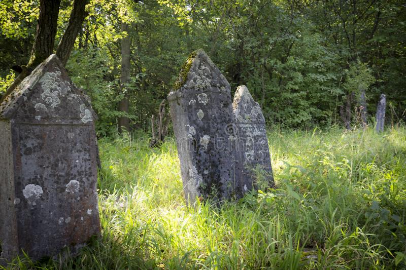 Jewish cemetery in Poland an abandoned place full of beautiful matzevot.  royalty free stock photo