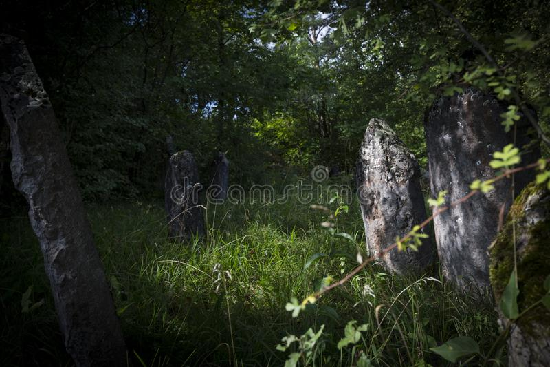 Jewish cemetery in Poland an abandoned place full of beautiful matzevot.  stock photo
