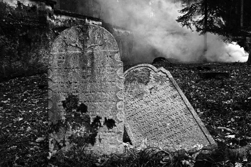 Download Jewish Cemetery In Puclice. Royalty Free Stock Image - Image: 13741696