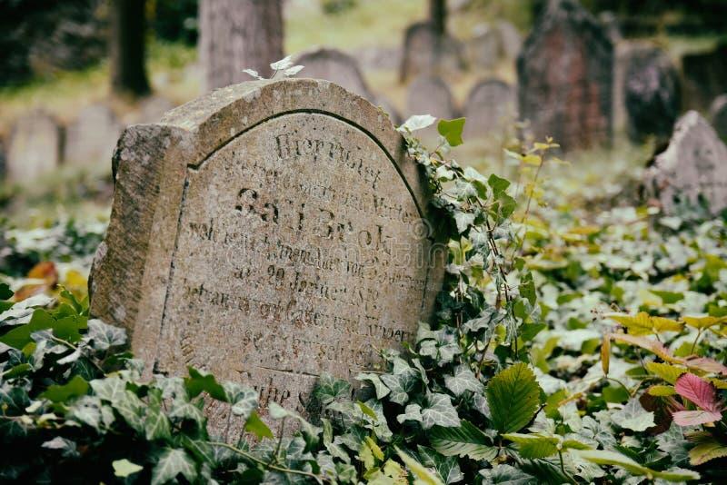 Jewish cemetery in Trebic royalty free stock photo