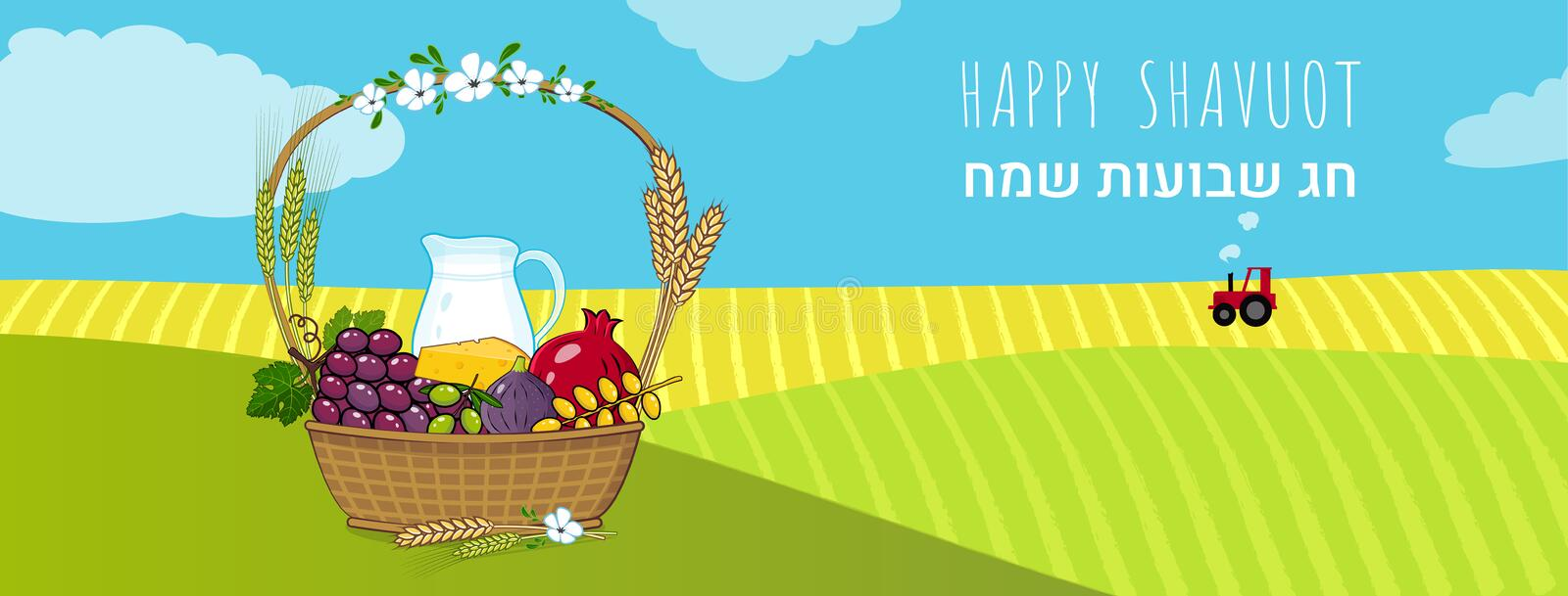 Shavuot Jewish holiday concept with fruits basket Vector illustration. Happy Shavuot in Hebrew. Jewish holiday shavuot concept with traditional fruits basket and royalty free illustration