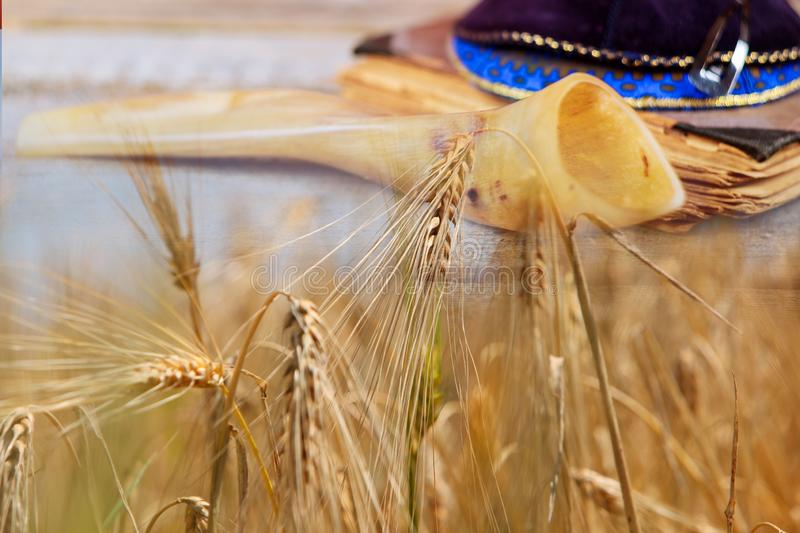 Jewish holiday Shavuot torah and shofar, wheat field background. Shavuot jewish holiday torah and shofar, kippa wheat field background holidays food kosher royalty free stock photography