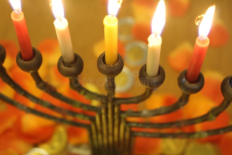 Jewish menorah with lighted candles flowers and chocolate coins Hanukkah and Judaic holiday symbol. Jewish menorah with lighted candles, flowers and chocolate stock photo