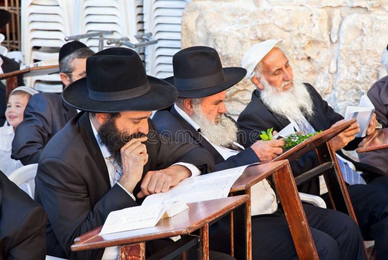 Jewish praying at the western wall stock photo