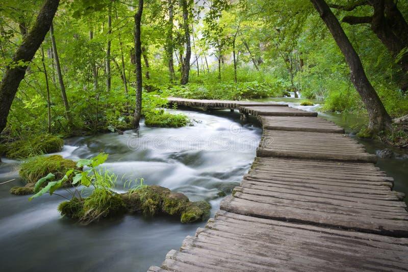 jezeranationalparkplitvicka arkivfoto