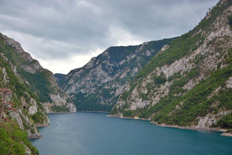 Jezero озера Piva - Pivsko стоковые фото