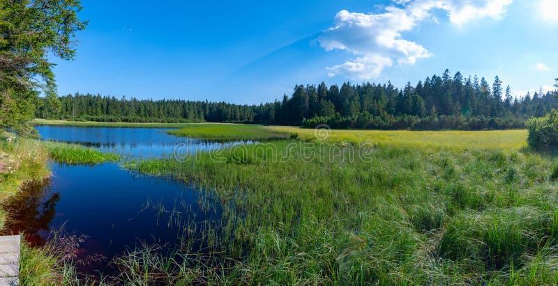 Jezero Crno или черное озеро, популярное пешее назначение на Pohorje, Словении стоковая фотография