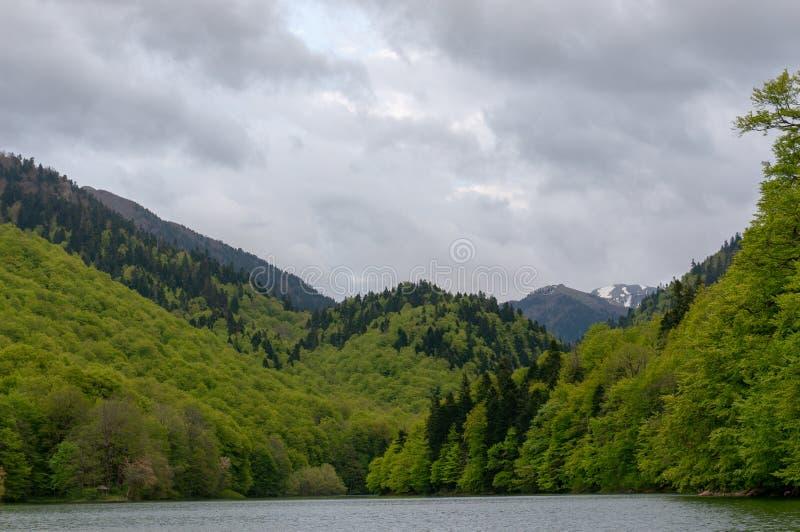 Jezero de Biograd Biogradsko del lago, parque nacional de Biogradska Gora, Montenegro imagenes de archivo