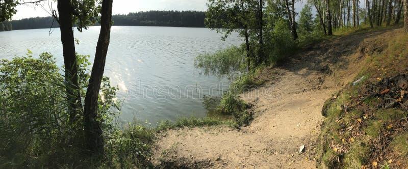 Jeziora Lithuania Mała plaża przy lasowym jeziorem obrazy royalty free