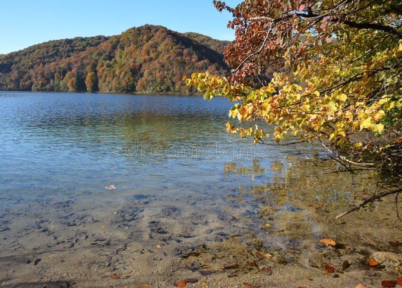 Jeziora plitvice w Croatia obraz stock