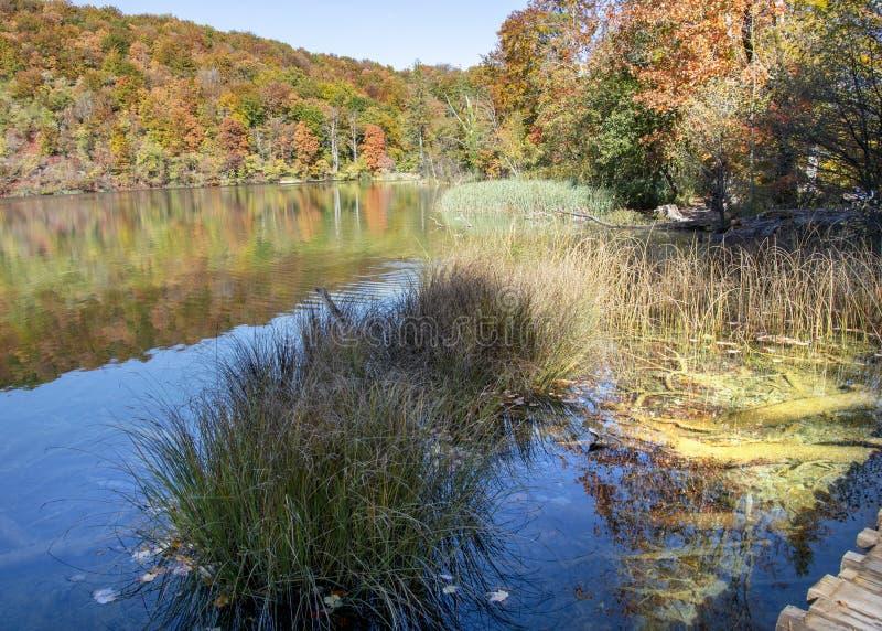 Jeziora plitvice w Croatia obraz royalty free