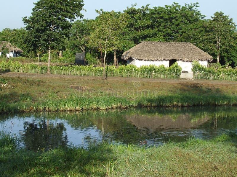 jeziora znaleźć odzwierciedlenie w domu jest woda zdjęcia royalty free