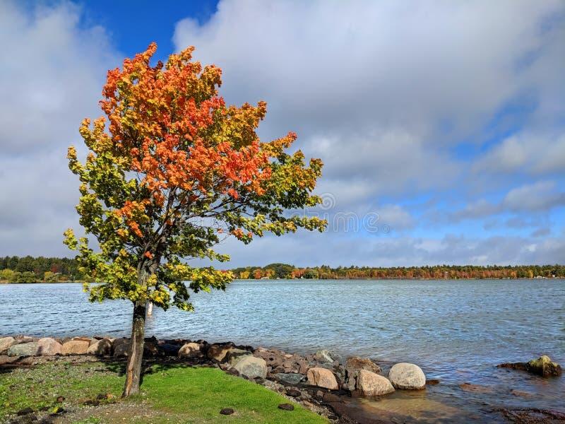 Jeziorna przełożonego Lanse zatoka fotografia stock