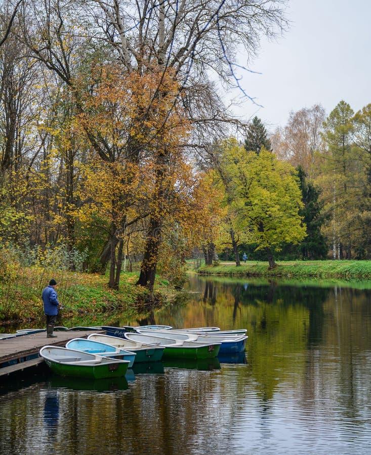 Jeziorna sceneria w jesieni obraz stock