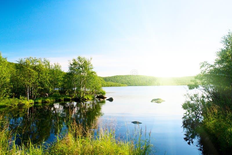 jeziorna tajga zdjęcie royalty free