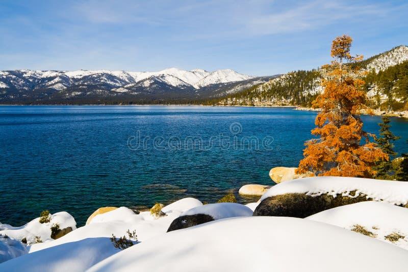 jeziorna zima fotografia royalty free