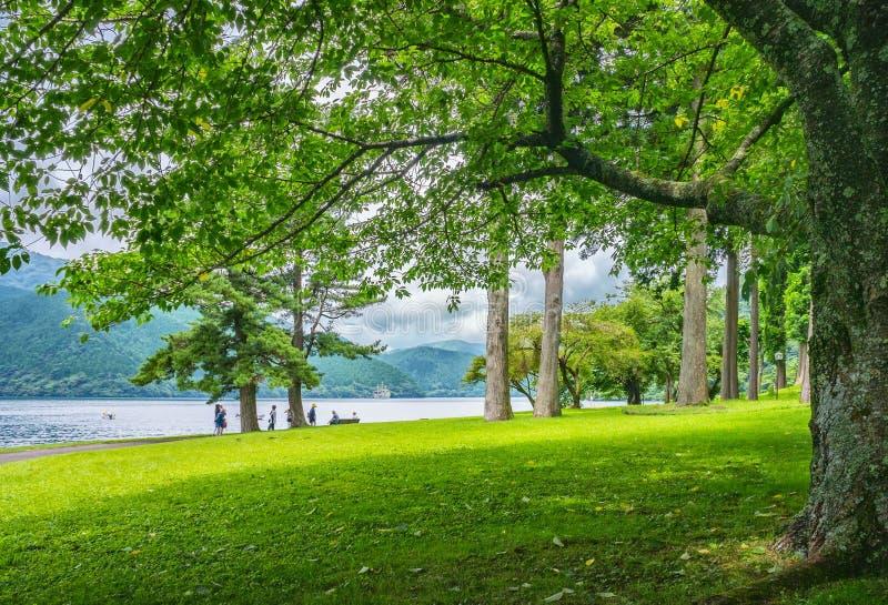 Jeziorny Ashi w Hakone parku narodowym, także znać jako Hakone jezioro lub Ashinoko jezioro, prefektura kanagawa, Japonia obraz stock