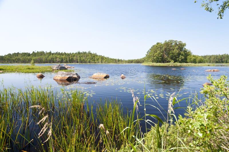 Jeziorny Asnen w Szwecja obrazy stock