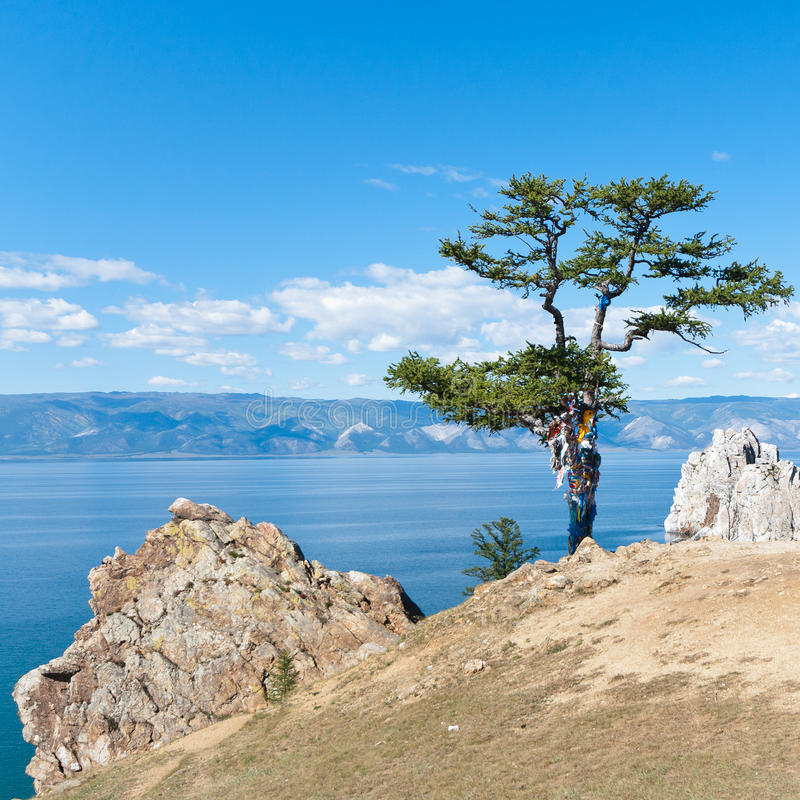 Jeziorny Baikal fotografia royalty free