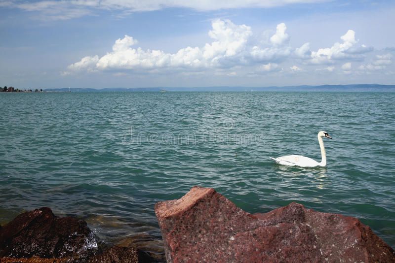 Jeziorny Balaton, Shiofok, Węgry fotografia royalty free