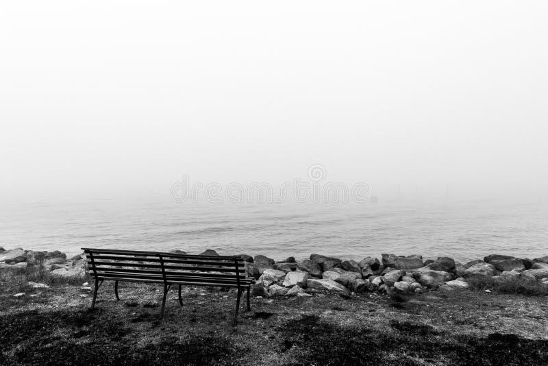 Jeziorny brzeg pośród mgły zdjęcia royalty free