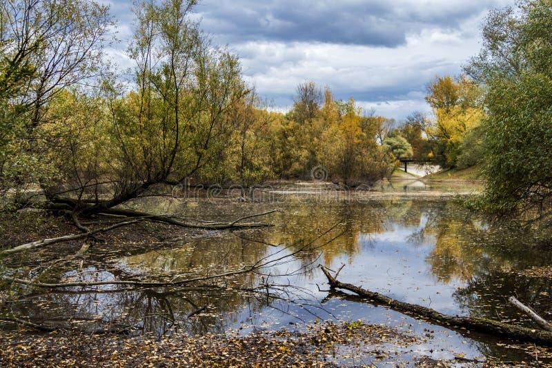 Jeziorny Bundek zdjęcie royalty free