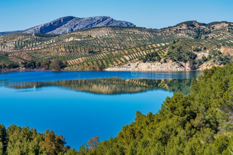 Jeziorny Embalse Del Guadalhorce, Ardales rezerwuar, Malaga, Andalusia, Hiszpania zdjęcie stock