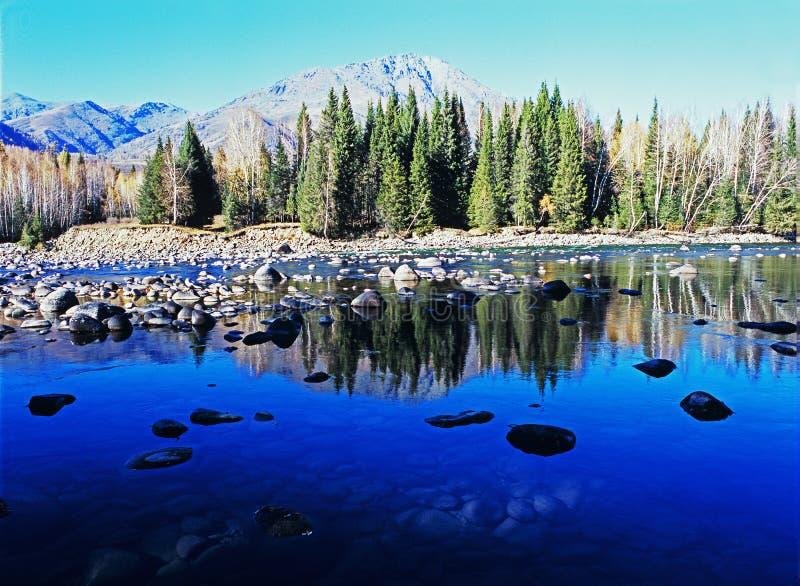 jeziorny halny drzewo obraz royalty free