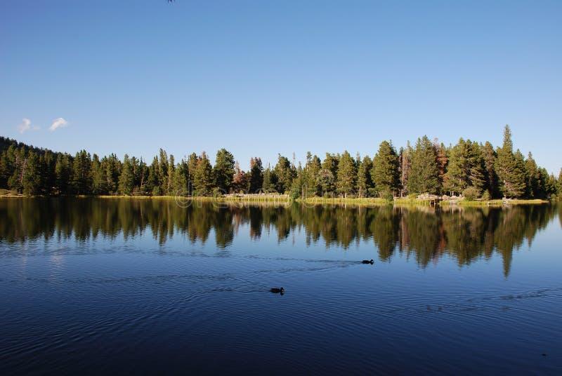 jeziorny halny skalisty spraque zdjęcia stock