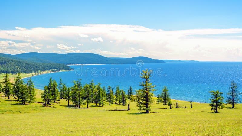 Jeziorny Hovsgol, północno-wschodni wybrzeże na pogodnym letnim dniu Mongolia obrazy royalty free