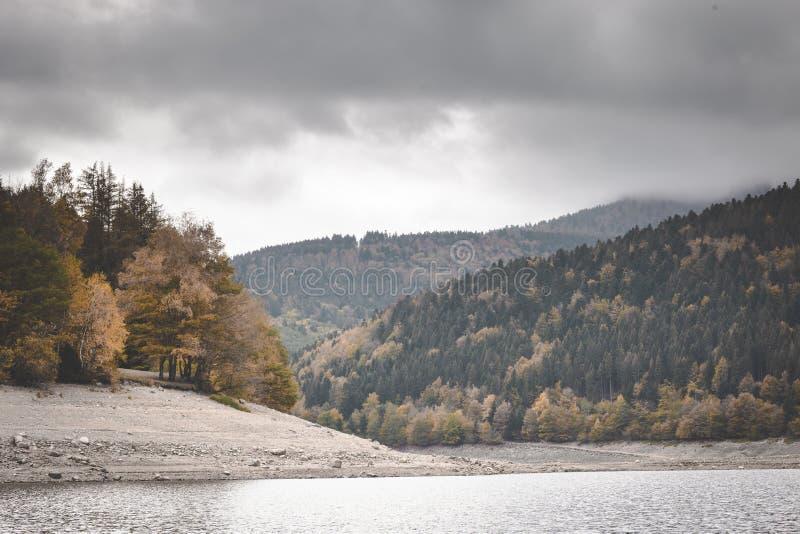 Jeziorny Kruth-Wildestein w Vosges z niskim poziomem wodym i jesiennych drzewach na górach ciemni markotni nieba zdjęcia royalty free