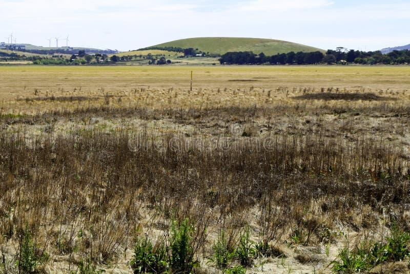 Jeziorny Learmonth, Ballarat - obraz royalty free