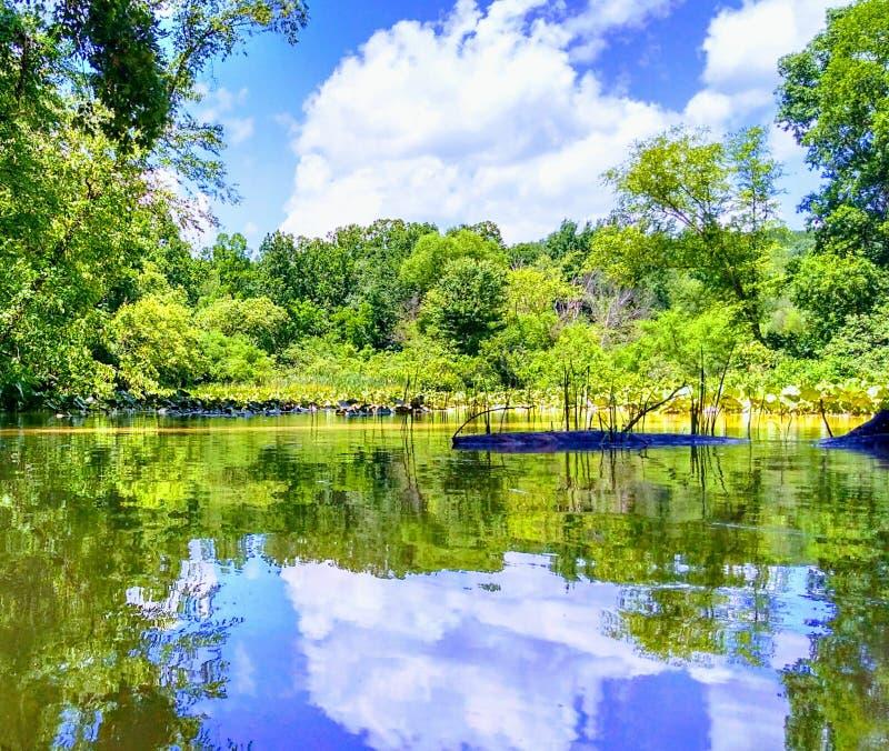 Jeziorny Logan obraz stock