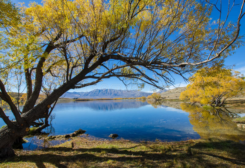 Jeziorny McGregor, Canterbury region, Nowa Zelandia fotografia royalty free