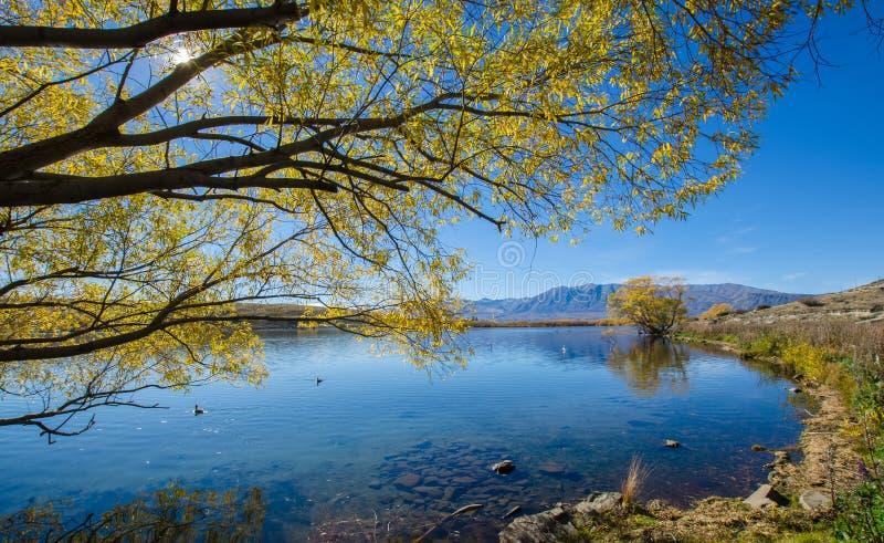 Jeziorny McGregor, Canterbury region, Nowa Zelandia zdjęcie royalty free