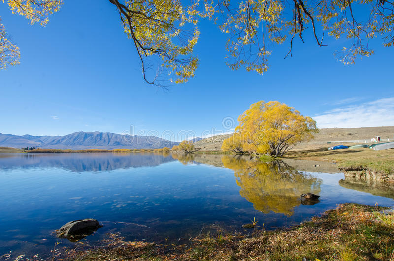 Jeziorny McGregor, Canterbury region, Nowa Zelandia obraz royalty free