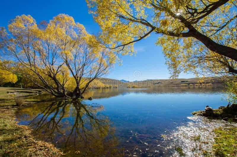 Jeziorny McGregor, Canterbury region, Nowa Zelandia obrazy stock
